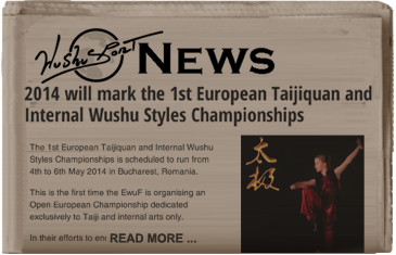 European Taiji and internal styles championships 2014
